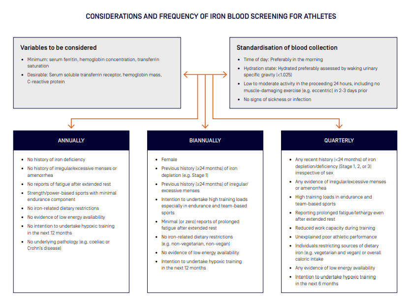 Considerations and frequency of iron blood screening for athletes  Variables to be considered. Minimum: serum ferritin, hemoglobin concentration, transferrin saturation.  Desirable: Serum soluble transferrin receptor, hemoglobin mass, C-reactive protein.  Standardisation of blood collection. Time of day: Preferably in the morning. Hydration state: Hydrated preferably assessed by waking urinary specific gravity (<1.025). Low to moderate activity in the proceeding 24 hours, including no muscle-damaging exercise (e.g. eccentric) in 2-3 days prior. No signs of sickness or infection.  Annually No history of iron deficiency. No history of irregular/excessive menses or amenorrhea. No reports of fatigue after extended rest. Strength/power-based sports with minimal endurance component. No iron-related dietary restrictions. No evidence of low energy availability. No intention to undertake hypoxic training in the next 12 months. No underlying pathology (e.g. coeliac or Crohn's disease).  Biannually Female. Previous history (≥24 months) of iron depletion (e.g. Stage 1). Previous history (≥24 months) of irregular/excessive menses.  Intention to undertake high training loads especially in endurance and team-based sports. Minimal (or zero) reports of prolonged fatigue after extended rest. No iron-related dietary restrictions (e.g. non-vegetarian, non-vegan). No evidence of low energy availability.  Intention to undertake hypoxic training in the next 12 months.  Quarterly  Any recent history (<24 months) of iron depletion/deficiency (Stage 1, 2, or 3) irrespective of sex. Any evidence of irregular/excessive menses or amenorrhea. High training loads in endurance and team-based sports. Reporting prolonged fatigue/lethargy even after extended rest. Reduced work capacity during training. Unexplained poor athletic performance. Individuals restricting sources of dietary iron (e.g. vegetarian and vegan) or overall caloric intake. Any evidence of low energy availability. Intention to under
