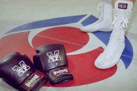 AIS boxing training 2002